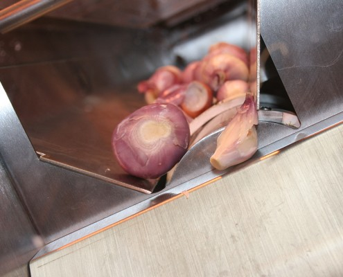 Mechanically peeled shallots leaving the discharge conveyor