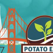 mp-potato-expo-small
