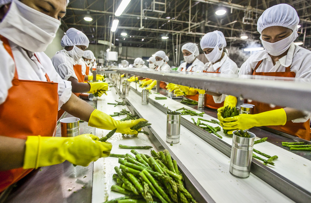 development of french economics by exporting large agriculture products and food processing Agro-industrial parks 5 export markets for agricultural products and processed food products policies affecting the development of food processing industries 62.