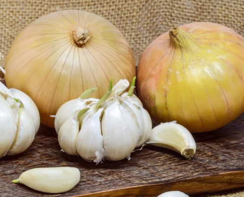 Onions and Garlic for Gut Health