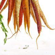 Freshcut Fruit and Vegetables Prevent Food Waste
