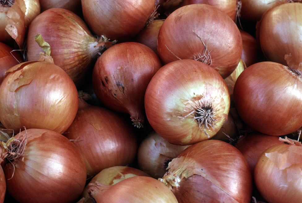 How onions can improve sleep and relieve stress