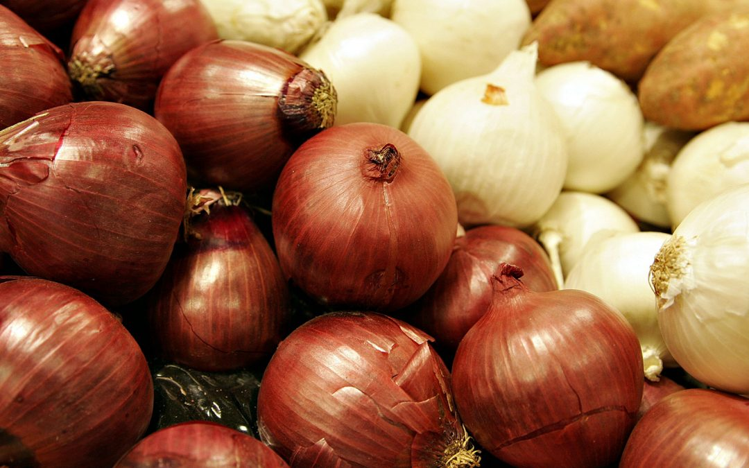The history of onions
