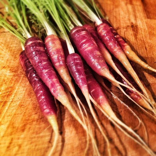 Are purple carrots better than their orange cousins?