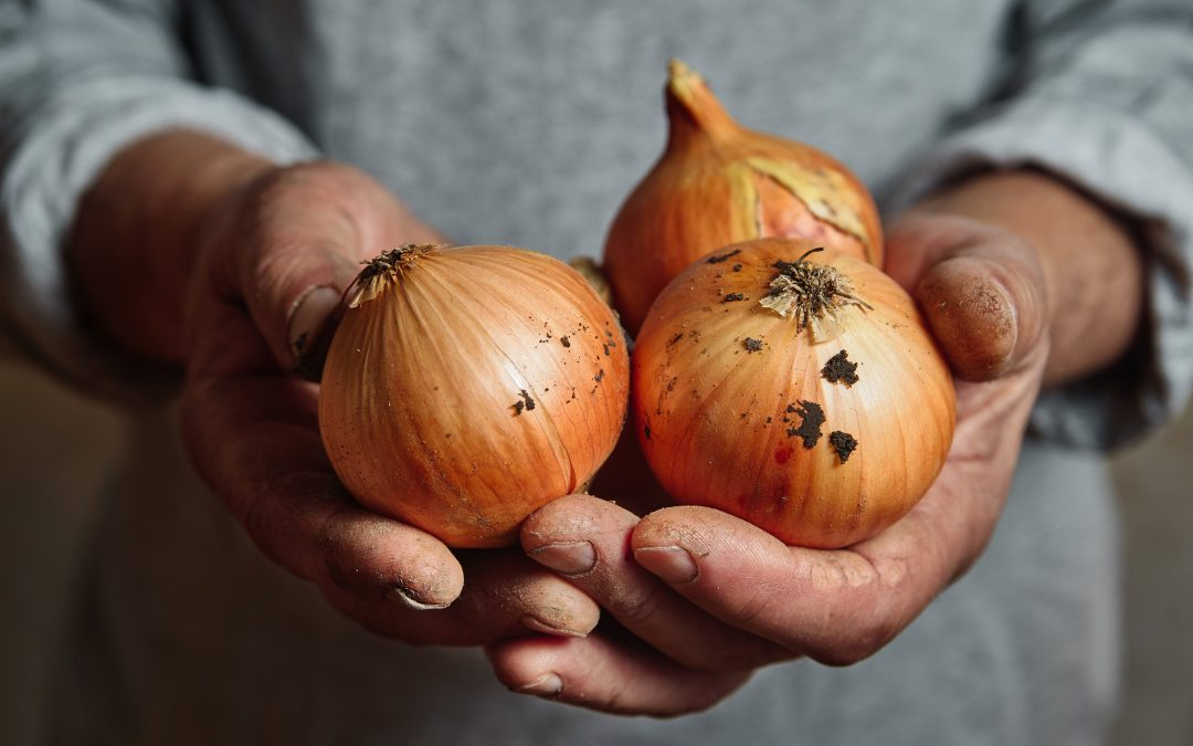 Is using onions as part of your skin care routine a good idea?